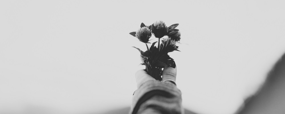 black and white hand holding flowers jpeg