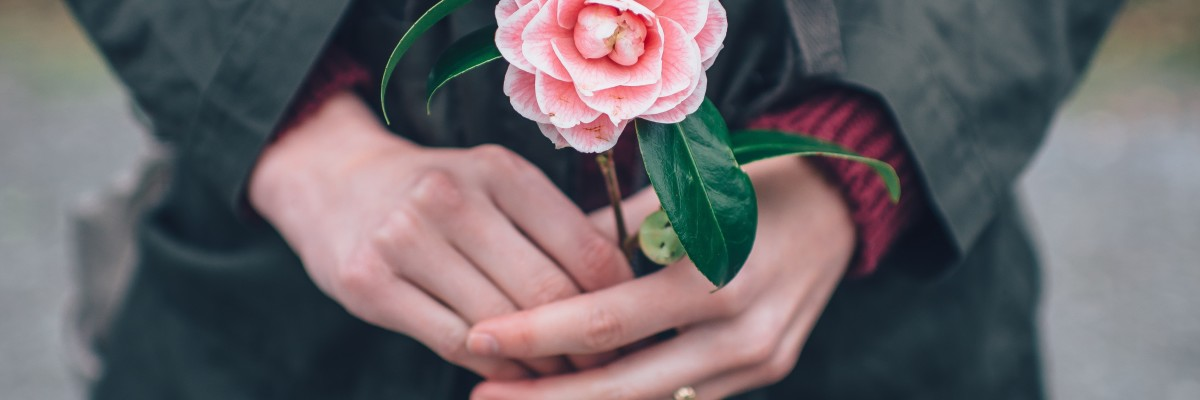 woman holding pink rose jpeg