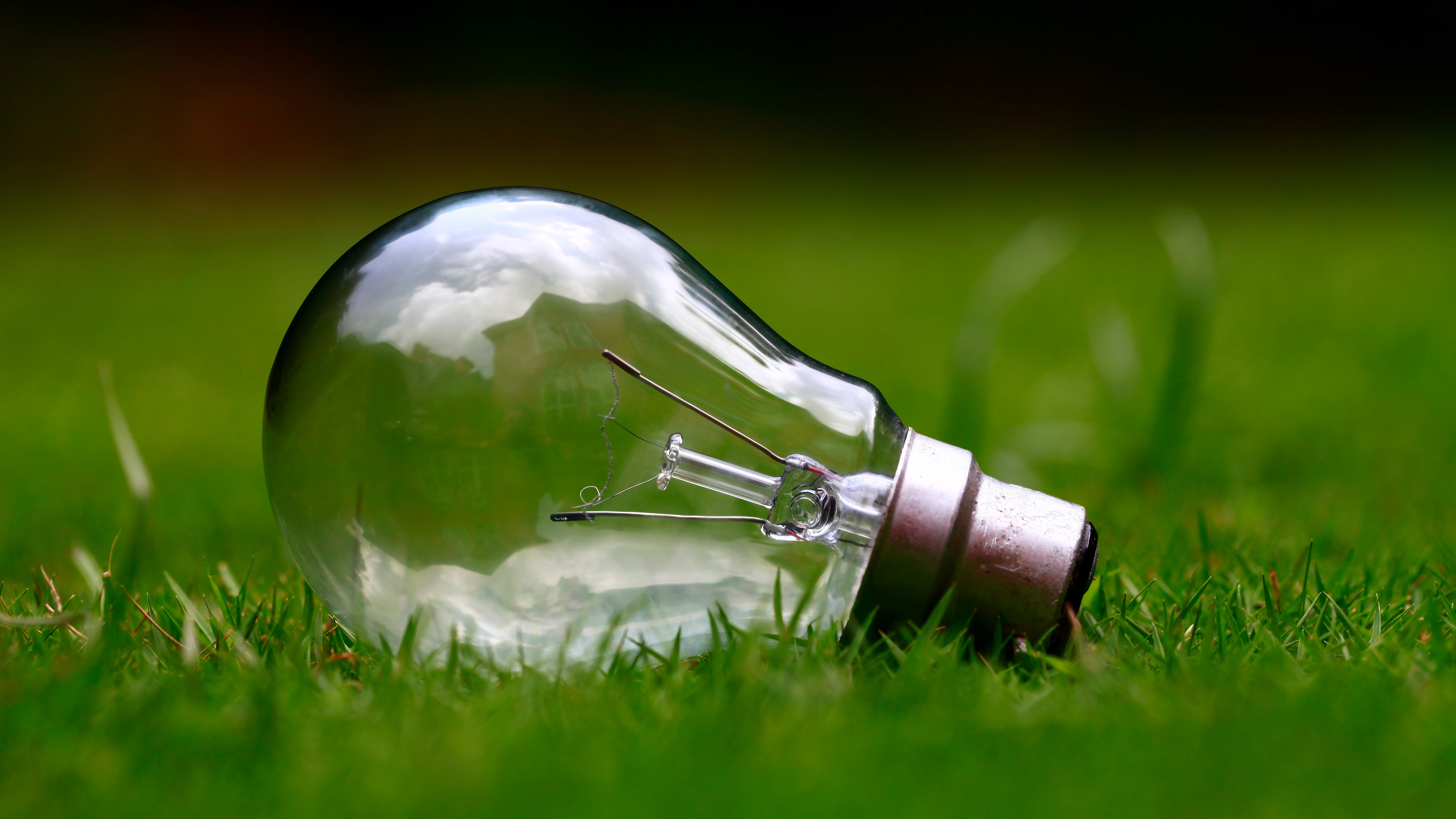 light bulb on side in the grass jpeg