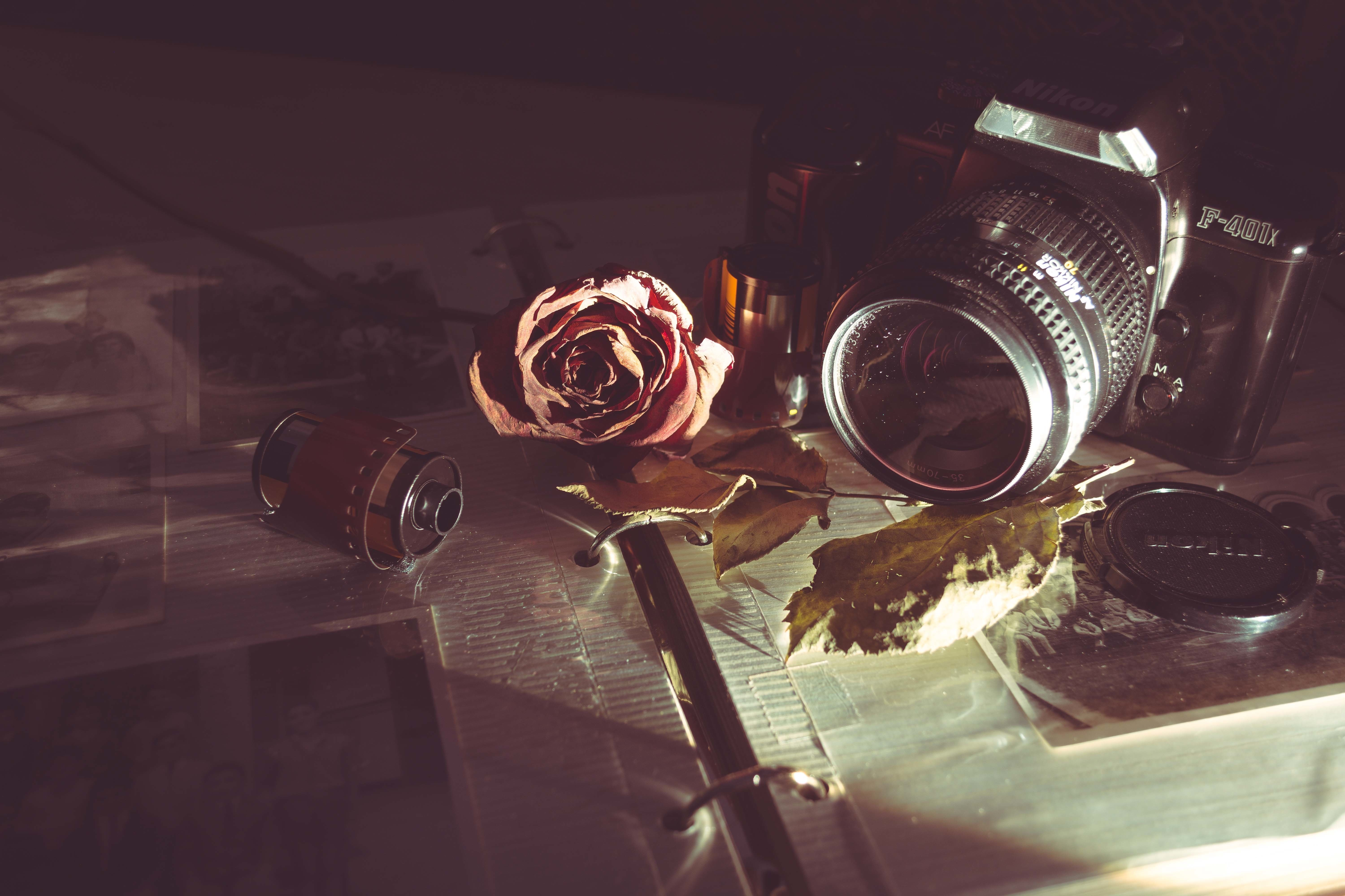 old camera with roll of film and rose jpeg