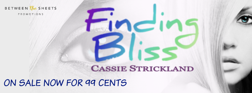 FindingBlissCassieStrickland LiteraryLaundryList